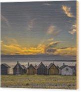 Faroe, Gotland, Sweden Wood Print
