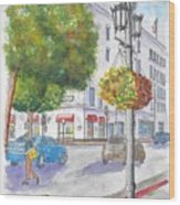 Farola With Flowers In Wilshire Blvd., Beverly Hills, California Wood Print