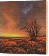 Fascinations - Warm Light And Rumbles Of Thunder In The Oklahoma Panhandle Wood Print