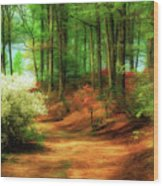 Favorite Path Wood Print