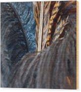 Feather Fun Wood Print