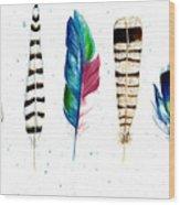 Feather Study Wood Print