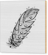 Feather1 Wood Print