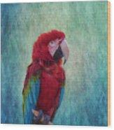 Feathered Friend Wood Print