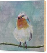 Feathered Friends First In Series Wood Print