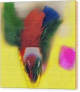 Feathers In Wine Glass Wood Print
