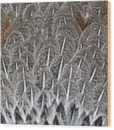 Feathers Of The Wild Hen Wood Print