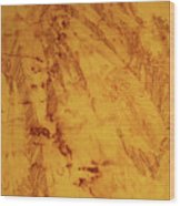 Feathers On The Wind Wood Print
