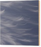 Feathery Sky Wood Print