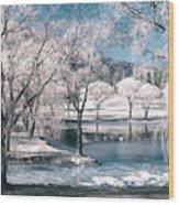 February 22 2010 Wood Print