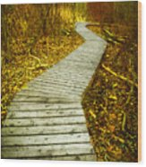 February 9 2010 Wood Print