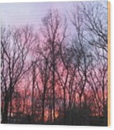 February At Twilight Wood Print