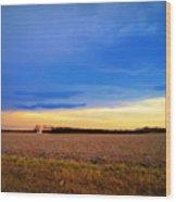 February Fields Wood Print