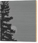 February Morning Moon Wood Print