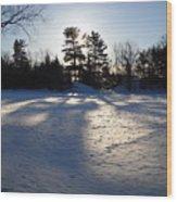 February Pine Tree Shadows Wood Print