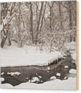 February Snow Wood Print