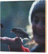 Feeding Birds In Hyde Park Wood Print