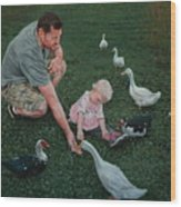 Feeding Ducks With Daddy Wood Print