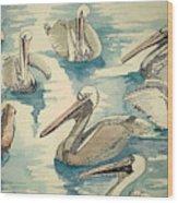 Feeding Pelicans Wood Print