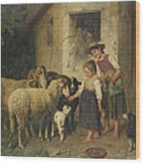 Feeding The Sheep Wood Print