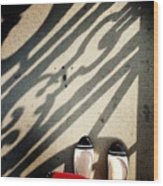 Feet Around The World #2 Wood Print