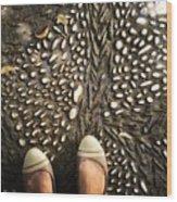 Feet Around The World #32 Wood Print