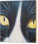 Feline Face 2 Wood Print