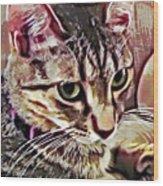 Feline Fancy Wood Print