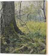Fell Plants Wood Print