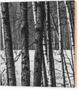 Fellows Wood Print