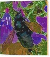 Female Carpenter Bee On Penstemons Wood Print