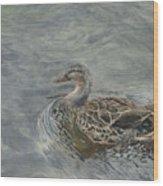 Female Duck Wood Print