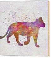 Female Lion 01 In Watercolor Wood Print