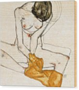 Female Nude Wood Print