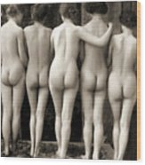 Female Nude Quintet Wood Print