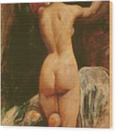 Female Nude Seen From The Back Wood Print