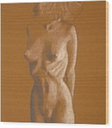 Female Nude Six Wood Print