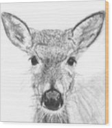 Female White-tailed Deer Wood Print