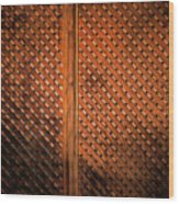 Fence #2 Wood Print