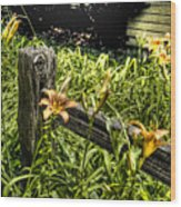 Fence And Flowers Wood Print