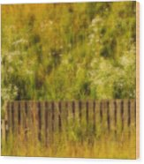 Fence And Hillside Of Wildflowers On Suomenlinna Island In Finland Wood Print