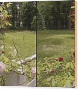 Fence Full Of Roses - Cross Your Eyes And Focus On The Middle Image Wood Print