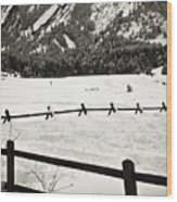 Fence Lines And Flatirons Wood Print