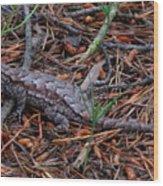 Fence Lizard Wood Print