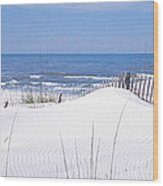 Fence On The Beach, Gulf Of Mexico, St Wood Print
