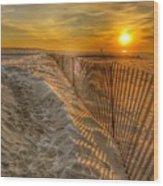Fence On The Beach Wood Print