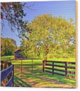 Fence Pasture And Barn 1721 Wood Print