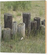 Fence Post All In A Row Wood Print