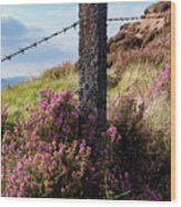 Fence Post In The Peak District Wood Print