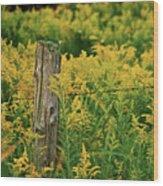 Fence Post7139 Wood Print